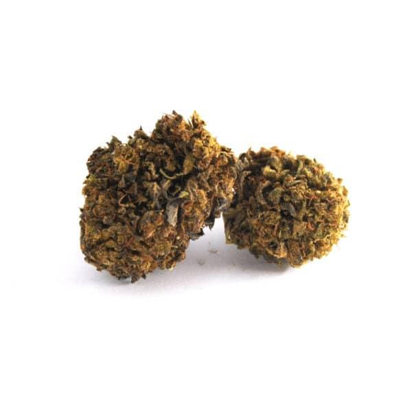 cbd herbe